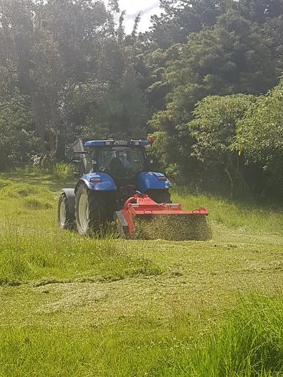 Topping grass with Vigolo heavy duty mulcher