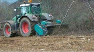 Mulching trees with Picursa forestry mulcher