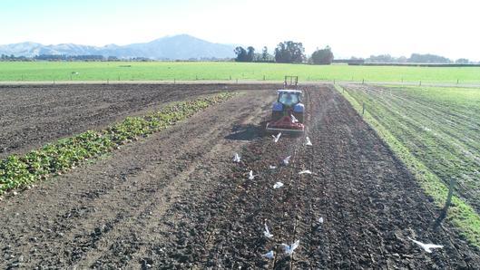 Rata subsoiler working in ex crop ground