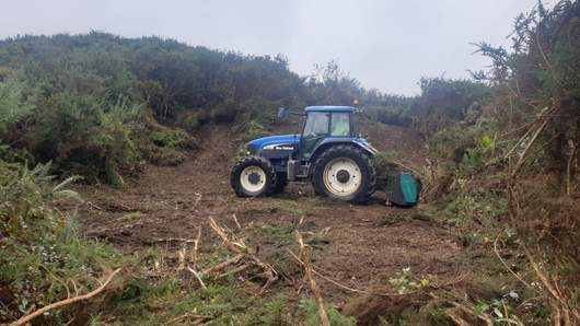 Clearing gorse with Boxing fixed tooth mulcher.