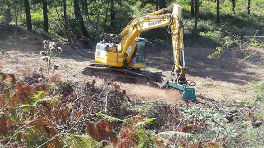 Digger mounted forestry mulcher | Picursa