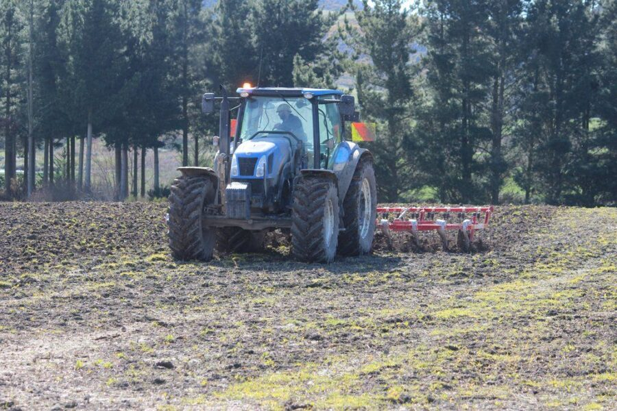Flexicoil cultivator with finger tines